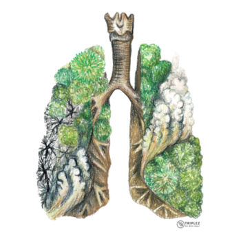 Amazon Lungs - Mens Staple Organic Tee Design